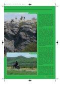 AlbTraum - Kultourbikes.de - Seite 2