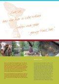 Natur - Gemeinde Velen - Seite 5
