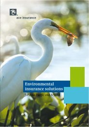 Environmental Insurance Solutions.pdf - ACE Group