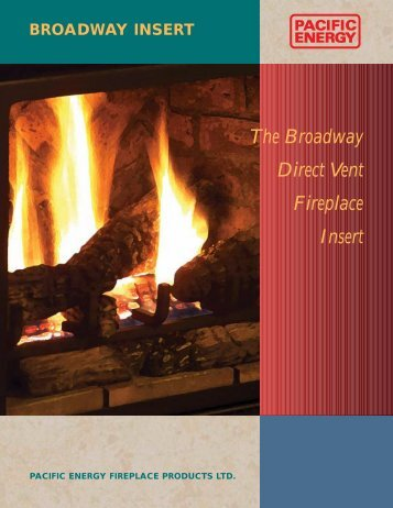 The Broadway Direct Vent Fireplace Insert - Sweepsusa.net