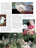 aktuell - Kurt Viebranz Verlag - Seite 3