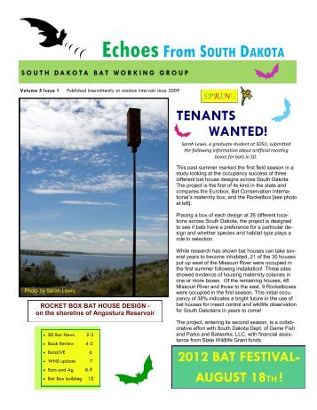 EchoesFrom SOUTH DAKOTA - Year of the Bat