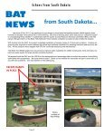 EchoesFrom SOUTH DAKOTA - Year of the Bat - Page 2