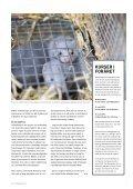 dansk pelsdyravl - Kopenhagen Fur - Page 7