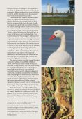 Learn more about birding reserves. - Page 3