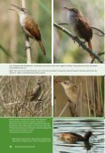 Learn more about birding reserves. - Page 6