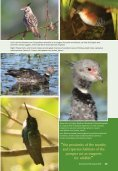 Learn more about birding reserves. - Page 7