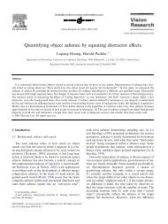 Quantifying object salience by equating distractor effects - Learning ...