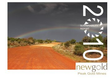 2010 Sustainability Report - New Gold