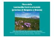 Flora della Lombardia Centro-Orientale-presentazionedell'opera - FAB