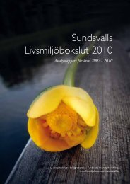 Livsmiljöbokslut 2010 - Sundsvall