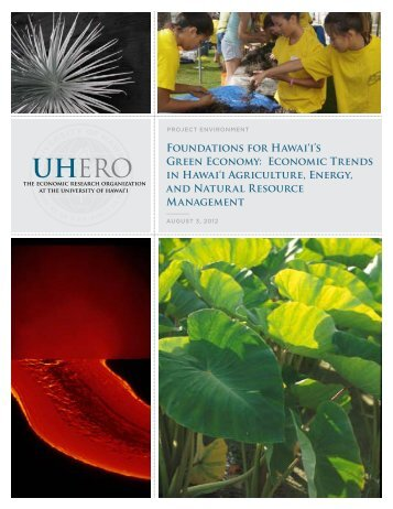 FOUNdATIONS FOR HAwAI'I'S GREEN ECONOMy ... - UHERO