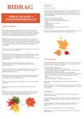 Bidrag - Båstads kommun - Page 2