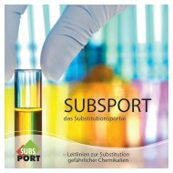 Broschüre - subsport – substitution support portal