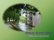 Annual Report 2012.pdf (size 5.8 MB) - Offaly County Council