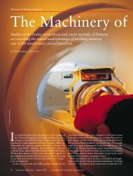 The Machinery of Thought
