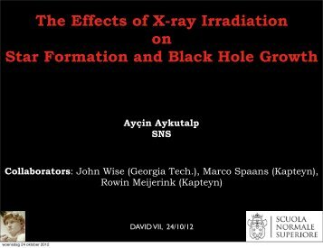 The Effects of X-ray Irradiation on Star Formation and Black Hole ...