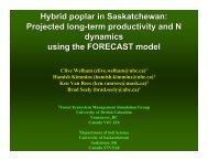 Hybrid poplar in Saskatchewan - University of British Columbia