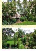 Seite 36 ROSEN Faszination 2/2009 - RDB Verlag - Seite 3