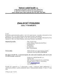ZNALECKÝ POSUDEK číslo: 7178-850/2013 - e-aukce