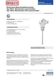 Einschraub-Widerstandsthermometer Typ TR211, Messeinsatz ...