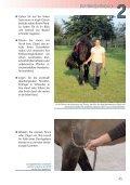 Bodenarbeit bewusst gemacht . . 84 - Seite 5
