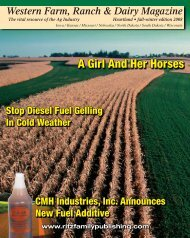 A Girl And Her Horses - Ritz Family Publishing, Inc.