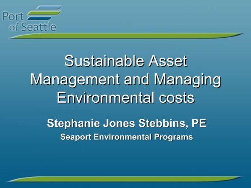 Sustainable Asset Management and Managing Environmental costs