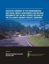 executive summary of the environmental and social impact ...
