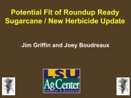 Potential Fit of Roundup Ready Sugarcane / New Herbicide Update