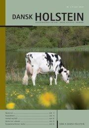 2-2007 - Dansk Holstein