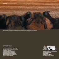 Pieghevole (pdf) - Museo di Storia Naturale - Università degli Studi ...