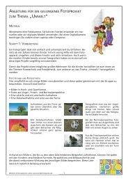 Anleitung für ein Fotoprojekt - Kinderfotopreis