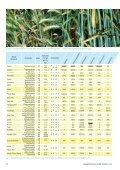 DTR erfordert schnelles Handeln - Landwirtschaft ohne Pflug ... - Seite 3