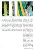 DTR erfordert schnelles Handeln - Landwirtschaft ohne Pflug ... - Seite 7