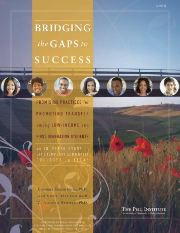 Bridging the Gaps to Success — Promising Practices for Promoting ...