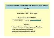 (Centre Commun de Microanalyse des Protéines) par Michel BECCHI