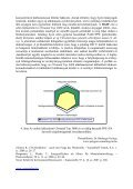 Poliamidok széles választéka az autóipari alkalmazásokhoz - Page 6