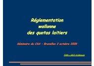 Expérience de mise en œuvre – Belgique - CSA