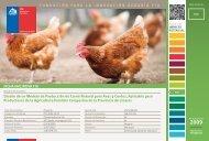 Diseño de un Modelo de Producción de Carne Natural para ... - Fia