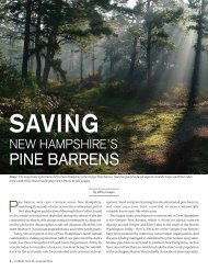 Saving New Hampshire's Pine Barrens - Society for the Protection of ...