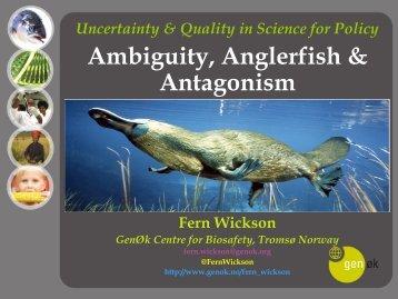 Ambiguity, Anglerfish & Antagonism - IPSC
