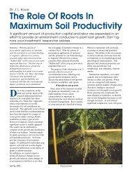 The Role of Roots in Maximum Soil Productivity - Fluid Fertilizer ...