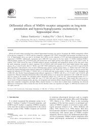 Differential effects of NMDA–receptor antagonists on long-term ...