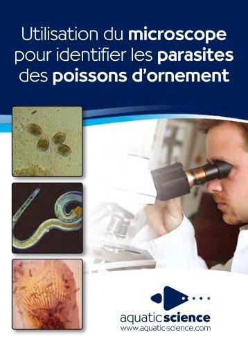 Microscope (Aquatic Science) - L'Oasis