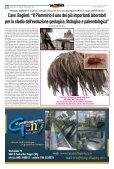 n.14 - La Civetta di Minerva - Page 2