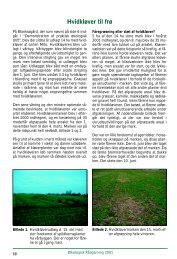 Dyrkning af hvidkløver til frø - Økologisk Rådgivning