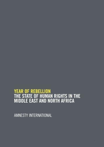 AIR 2011 - Option 3 - Amnesty International Österreich