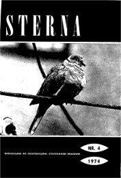 Sterna, bind 13 nr 4 (PDF-fil) - Museum Stavanger