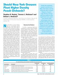 Higher Density Peach Orchards in NY - New York State Horticultural ...